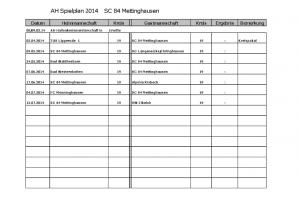 AH Spielplan 2014 klein